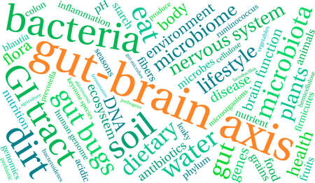 genomics: Gut-Brain Axis word cloud on a white background. Illustration