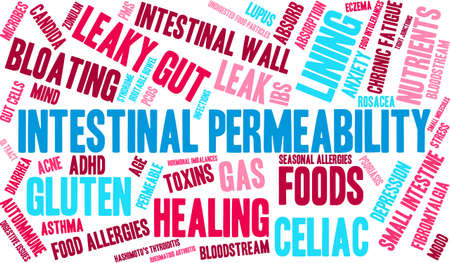 gut: Intestinal Permeability word cloud on a white background.
