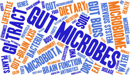 gut: Gut Microbes word cloud on a white background.