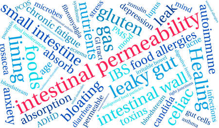 ibs: Intestinal Permeability word cloud on a white background.