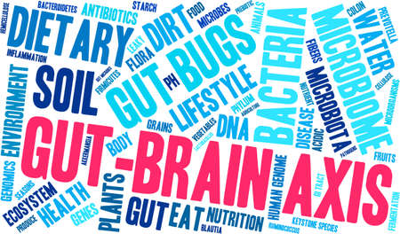 Gut-Brain Axis word cloud on a white background. Vectores