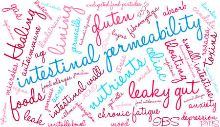 intestinal: Intestinal Permeability word cloud on a white background.