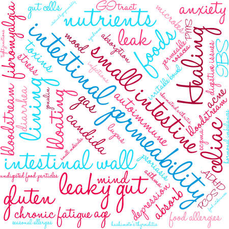 wall of bowel: Intestinal Permeability word cloud on a white background.