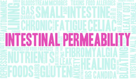 bloating: Intestinal Permeability word cloud on a white background.