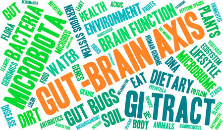 Gut-Brain Axis word cloud on a white background. Çizim
