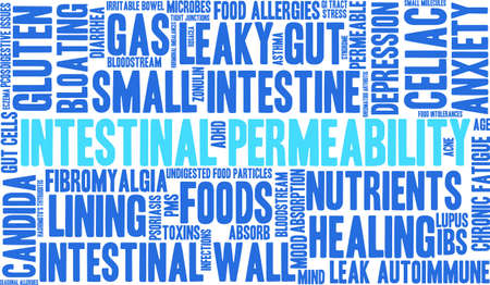 malabsorption: Intestinal Permeability word cloud on a white background.