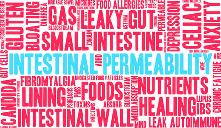 irritable bowel syndrome: Intestinal Permeability word cloud on a white background.