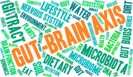 keystone: Gut-Brain Axis word cloud on a white background. Illustration