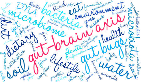 gut: Gut-Brain Axis word cloud on a white background. Illustration