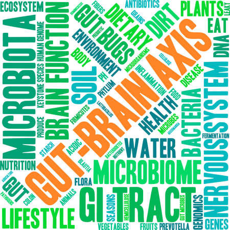 Gut-Brain Axis word cloud on a white background. Illustration