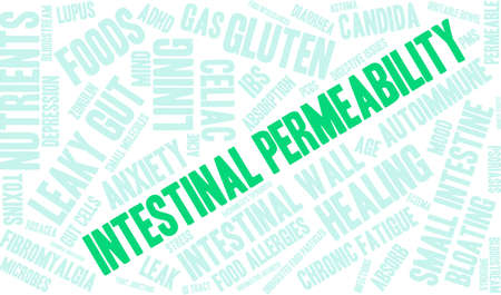 hypersensitivity: Intestinal Permeability word cloud on a white background.