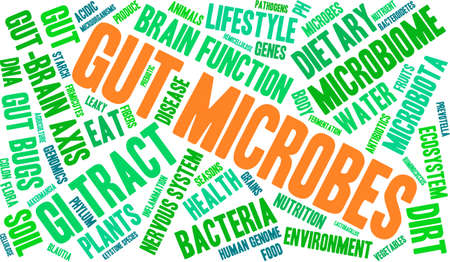 keystone: Gut Microbes word cloud on a white background.