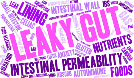 fibromyalgia: Leaky Gut word cloud on a white background.