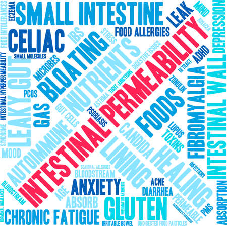 histamine: Intestinal Permeability word cloud on a white background.