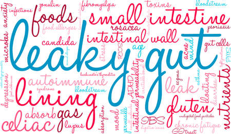 bowel: Leaky Gut word cloud on a white background.