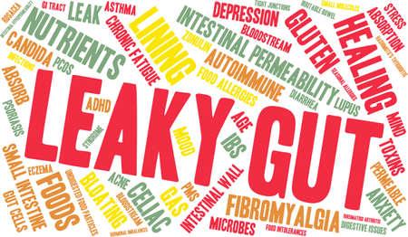intolerancia: Leaky Gut palabra nube sobre un fondo blanco. Vectores