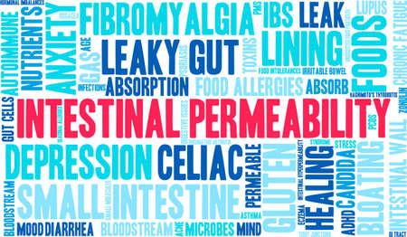 bowel: Intestinal Permeability word cloud on a white background.