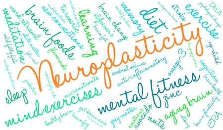 Neuroplasticity word cloud on a white background. 向量圖像