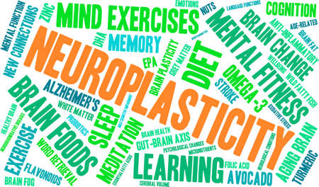 impairment: Neuroplasticity word cloud on a white background. Illustration