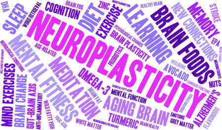 oxidative: Neuroplasticity word cloud on a white background. Illustration