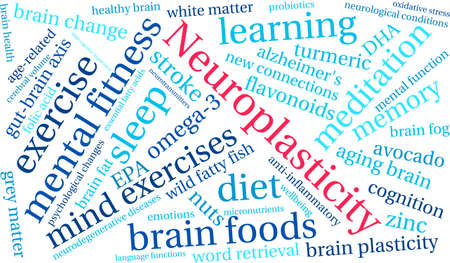 anti aging: Neuroplasticity word cloud on a white background. Illustration