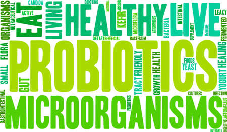 absorb: Probiotics word cloud on a white background.