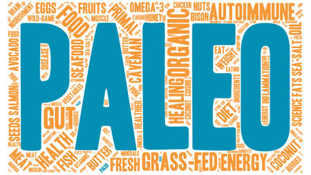 absorption: Paleo word cloud on a white background.