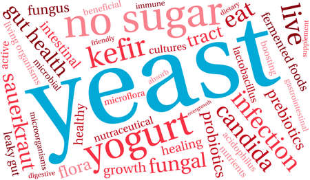 fungal: Yeast Infection word cloud on a white background.