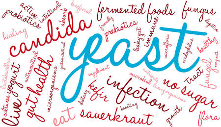candida: Yeast Infection word cloud on a white background.