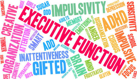 Executive Function ADHD word cloud on a white background.  Illustration