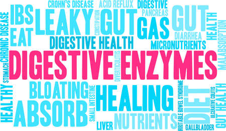 Digestive Enzymes word cloud on a white background. Stok Fotoğraf - 89041173