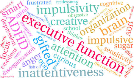 Executive Function ADHD word cloud on a white background.