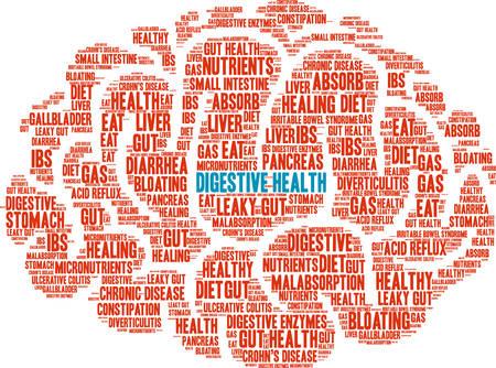Spijsverteringsgezondheid woordwolk op een witte achtergrond. Stock Illustratie