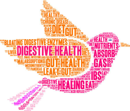 Digestive Health word cloud on a white background. Ilustrace