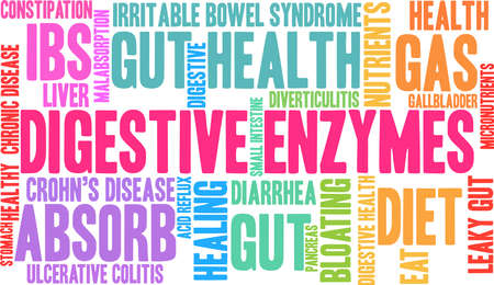 Digestive Enzymes word cloud on a white background.  Ilustrace