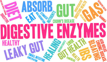 Digestive Enzymes word cloud on a white background.