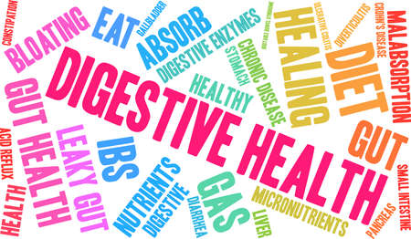 Digestive Health word cloud on a white background. Illustration