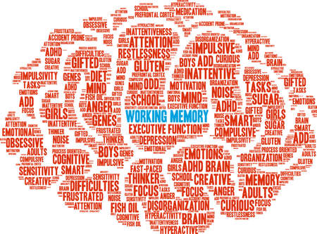 Working Memory ADHD word cloud on a white background.