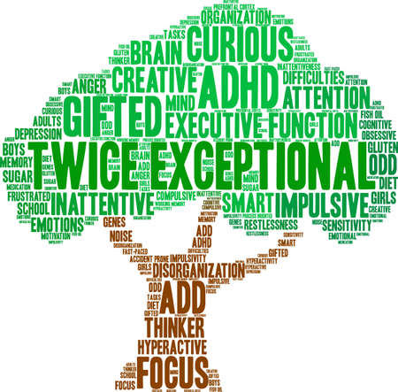 oriented: Twice Exceptional ADHD word cloud on a white background.
