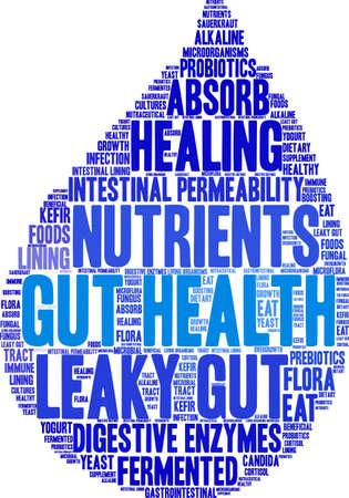 흰색 배경에 Gut 건강 단어 구름입니다.