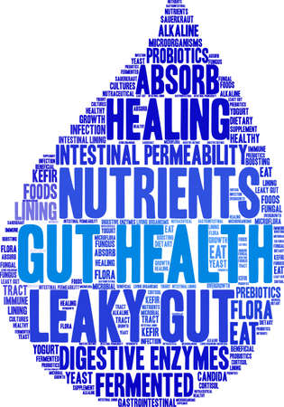 Gut Health word cloud on a white background. Stock Vector - 92942851