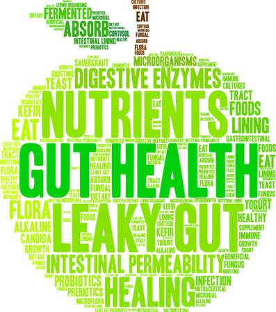 Nube de la palabra Gut Health sobre un fondo blanco.