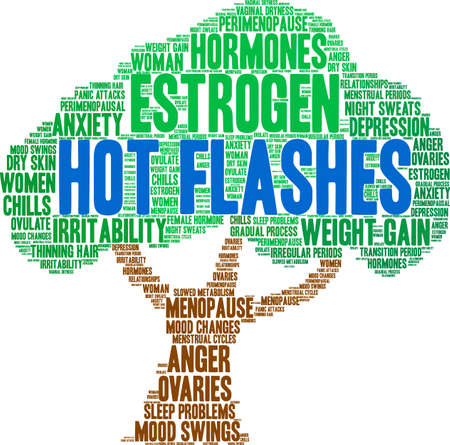Hot Flashes word cloud on a white background.  일러스트