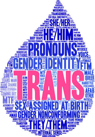 Trans word cloud on a white background.