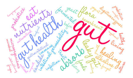 Gut word cloud on a white background.