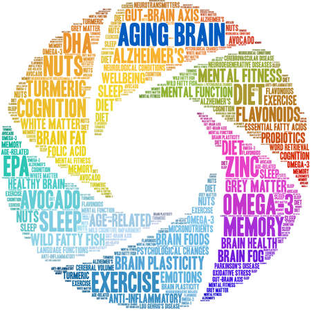 Aging Brain word cloud on a white background.