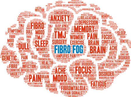 Fibro Fog word cloud on a white background.