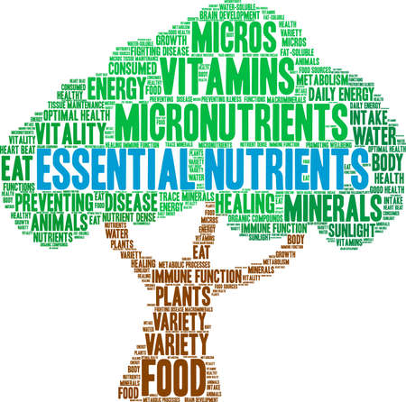 Essential Nutrients word cloud on a white background. 向量圖像