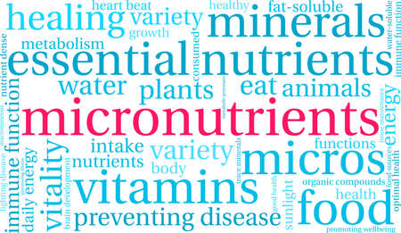 Micronutrients word cloud on a white background.