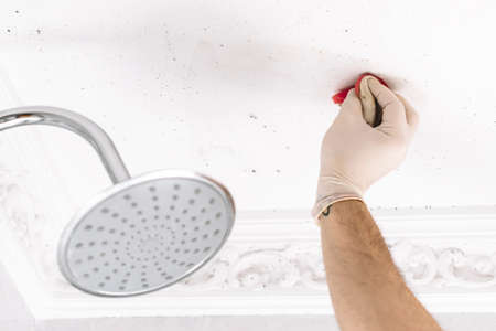 Person cleaning mold stains from the bathroom with gloves.